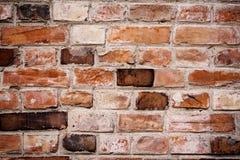 Brick wall. Old brick wall close up - texture Royalty Free Stock Photos