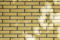 Free Brick Wall Stock Photo - 6727070