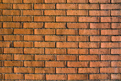 Brick wall. In the evening light, emphasizing the texture Royalty Free Stock Photo