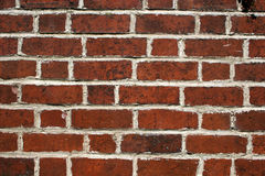 Brick wall. Close up of brick wall with white mortar Royalty Free Stock Image
