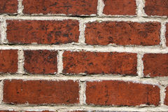 Brick wall. Close up of brick wall with white mortar Royalty Free Stock Photos