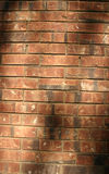 Brick wall. A background image of a brick wall with subtle shadows Stock Photography