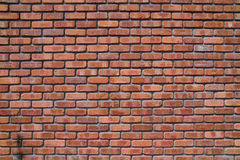 Free Brick Wall Royalty Free Stock Image - 8330386