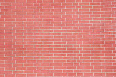 Brick wall. Red Brick wall stock images