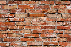 Brick wall. The old brick wall background Stock Images