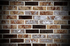 Brick wall abstract Stock Images