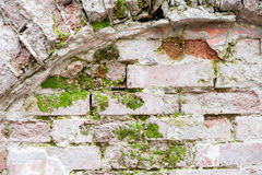 Brick wall with arc and moss. Brick wall with arc and green moss Royalty Free Stock Images