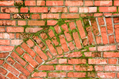 Brick wall with arch pattern. An old brick wall made of orange/red bricks with an arch pattern and some green moss Royalty Free Stock Images