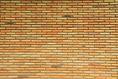 Brick wall background Royalty Free Stock Photography