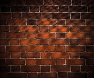 Brick wall background with grid shadow Royalty Free Stock Photos