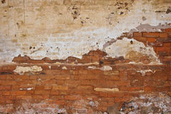 Brick wall background Royalty Free Stock Image