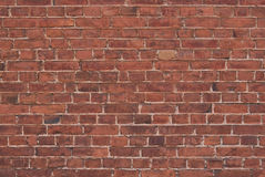 Brick wall background. Old brick wall texture for backgrounds Royalty Free Stock Images