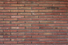 Brick Wall. Background with orange red and yellow tones Stock Image