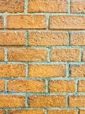 Red bricks wall. Brick wall background Royalty Free Stock Images