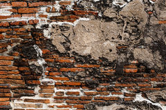 Brick wall background , red texture Stock Photos