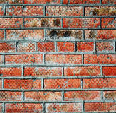 Brick wall. The background texture Royalty Free Stock Photography