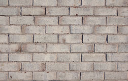 Brick wall background, texture Stock Images
