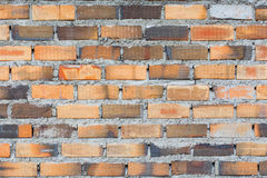 Brick wall. Background of brick wall texture Stock Photos