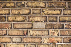Brick wall background texture Stock Photography