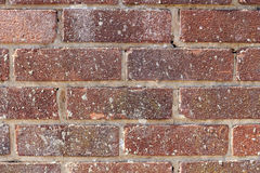 Brick wall background texture Royalty Free Stock Photos