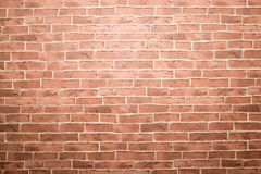 Brick wall. Royalty Free Stock Images