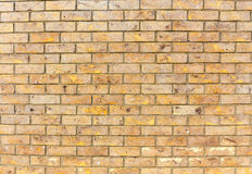 Brick wall. Beige texture. Royalty Free Stock Photography