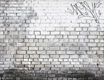 Brick wall in black and white Stock Image