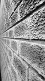 Brick wall. Black and white. Brick wall. Southafrica Royalty Free Stock Photos