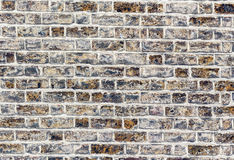 Brick wall. Blue and grey texture. Royalty Free Stock Image