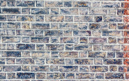 Brick wall. Blue texture. Royalty Free Stock Images