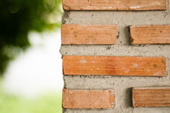 Brick wall and blurred green background Royalty Free Stock Photos
