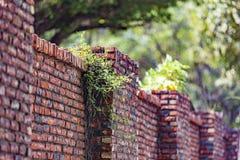 Brick, Wall, Brickwork, Leaf Stock Image