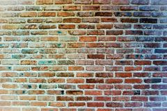 Brick wall. Bright bricks on the streets of the city Stock Images