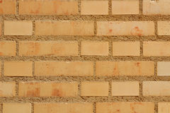 Brick wall of a building Royalty Free Stock Images