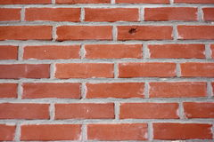 Brick Wall Close Up. A close-up view of an old red brick wall on the side of an historic building Stock Photography