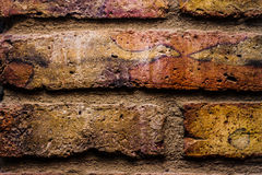 Brick Wall. Close-up image of a colorful brick wall texture Royalty Free Stock Photo