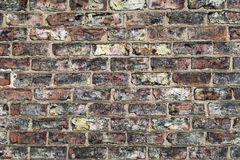 Brick wall closeup Stock Image
