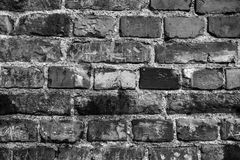 Brick wall. The color is black and white. Royalty Free Stock Photo