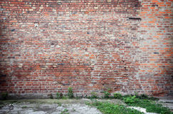 Brick wall with concrete floor Royalty Free Stock Image