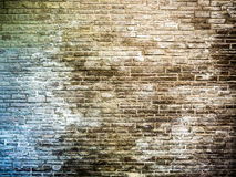 Brick wall corroded by salt Royalty Free Stock Images