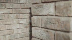 Brick wall. stock footage