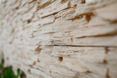 Brick wall details Royalty Free Stock Photo