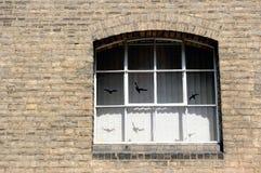 Brick wall, English style Royalty Free Stock Photography