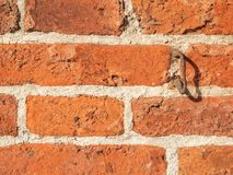 Brick wall with eyelet detail. Full frame closeup of a weathered bricks wall with a single rusted steel eyelet stock photos