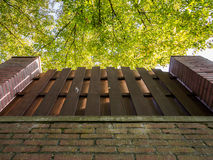 Brick Wall, Fence And Trees Royalty Free Stock Photo