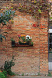 The brick wall with flowerbed Stock Image