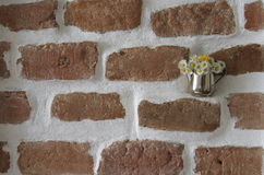 Brick wall and flowers Stock Photo