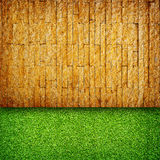 Brick Wall and grass for background Stock Images