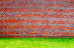 Brick wall with grass lawn Stock Image