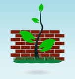 Brick wall. Grass vector concept royalty free illustration